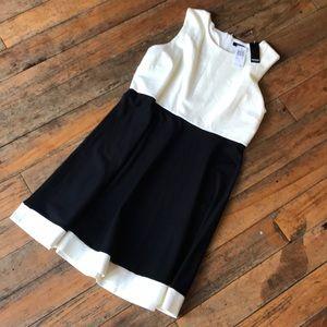 NWT Premise XL Dress